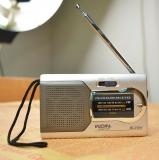 Радиоприемник AM/FM Indin BC-R22