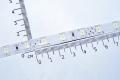 Гибкая светодиодная лента SMD 5630 60 светодиодов/метр, белый цвет, влагозащищенная.