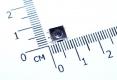 Кнопка тактовая SMD 6 * 6 * 3,1 мм IT-1157BHNP-160G-G (DTSMW-66N-V-T/R) (черная, с заземлением)