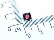 Кнопка тактовая SMD 6 * 6 * 3,1 мм IT-1157BHNP-160G-G (DTSMW-66N-V-T/R) (красная, с заземлением)